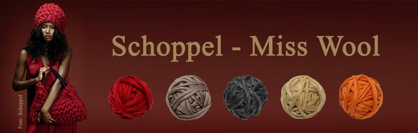 Schoppel Miss Wool 2