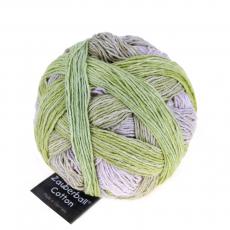 Schoppel - ZAUBERBALL® Cotton - 2341 Junges Gemüse